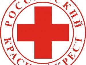 Российский Красный Крест опубликовал отчет о первом этапе реализации комплекса мероприятий, направленных на борьбу с ВИЧ-инфекцией