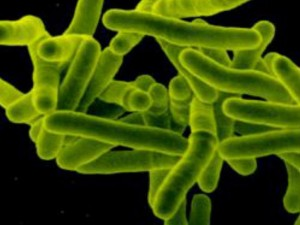 Фонд Ахметова «Развитие Украины» инициировал разработку нового законодательства в сфере борьбы с туберкулезом
