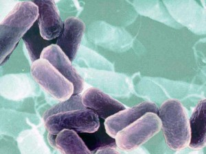 В сентябре в Китае 1399 человек стали жертвами различных инфекционных заболеваний