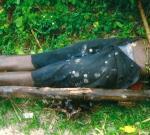 Кто виновники эпидемии холеры на Гаити?