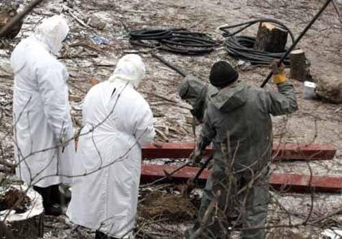 В Калмыкии угроза эпидемии сибирской язвы