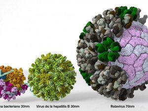 Вакцина против ротавирусной инфекции в действии