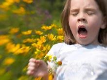 Американские иммунологии развеяли мифы относительно аллергии