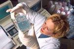Ученые близки к созданию вакцины от чумы