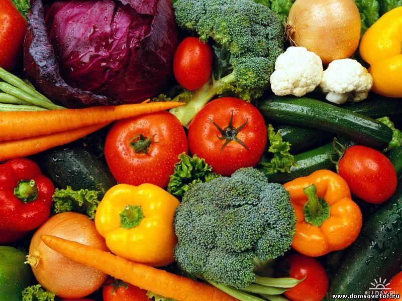 Устойчивые к антибиотикам бактерии обнаружены в голландских органических овощах