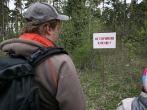 Клещи охотятся на людей в московских парках и на кладбищах