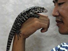 Домашние питомцы-рептилии могут принести в дом опасные микробы