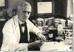 Кто открыл пенициллин?