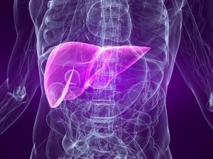 Что ожидает человека, которому поставлен диагноз «гепатит С»?