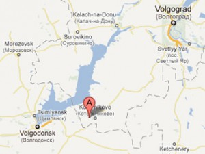 Двое жителей Волгоградской области заразились сибирской язвой