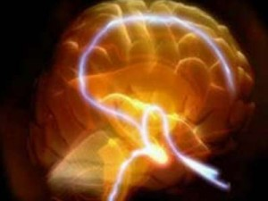 Профилактика сосудистых поражений головного мозга – путь к здоровью и долголетию