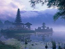 Туристический рай в опасности — на Бали выявлен вирус птичьего гриппа