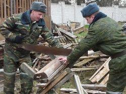 Санврачи нашли в военной части под Воронежем 9 вирусов