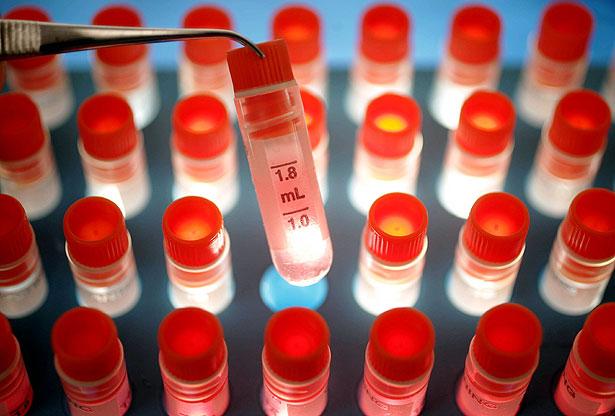 Изобретателям удалось сломать защитный механизм супербактерий