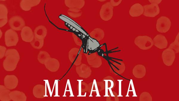 В борьбе с малярией добились значительного прогресса