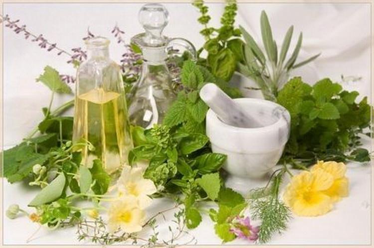 Растения укрепят иммунитет