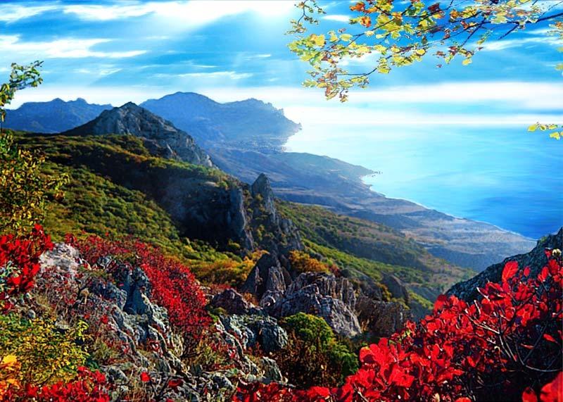 Лекарственная растительность горного Крыма