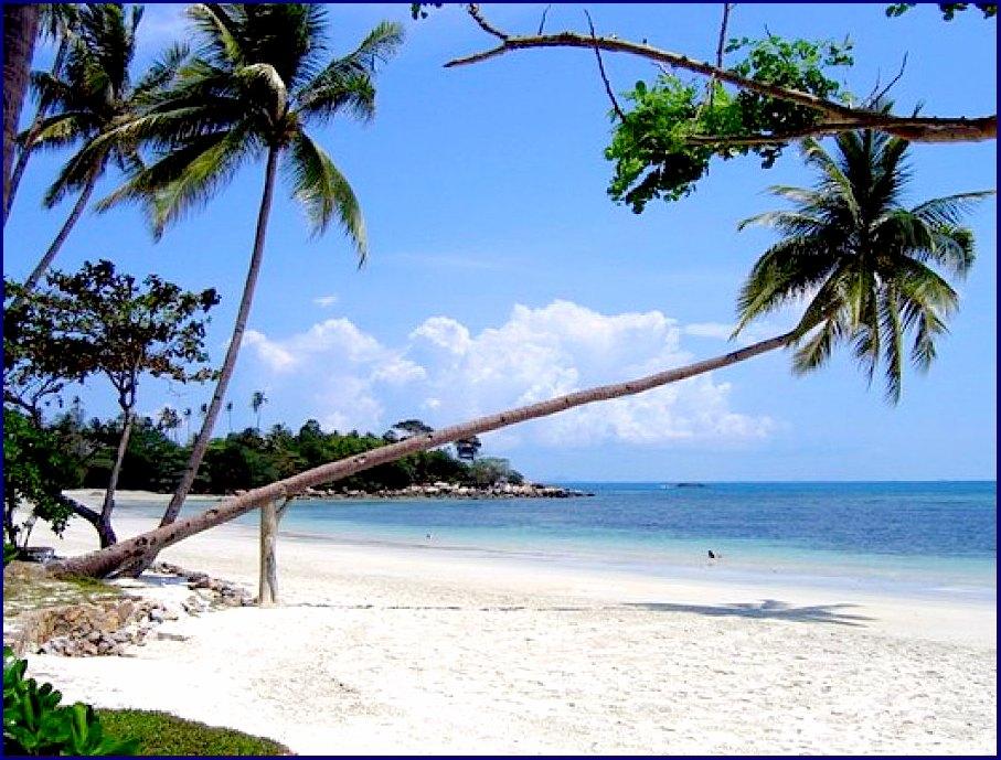 В распространении ВИЧ обвинили Бали