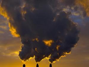 Причиной массовых отравлений является не сальмонеллезная инфекция