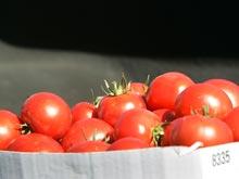 Гепатит А: помидоры держат Британию в страхе