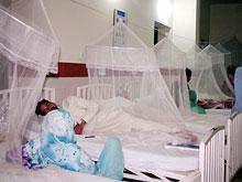 Пакистан стал центром распространения редкой смертельной инфекции