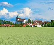 Окрестности Цюриха вошли в зону риска по неоэрлихиозу
