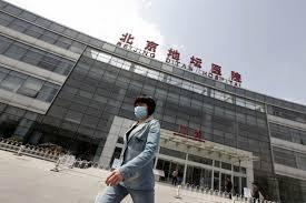 Риск пандемии птичьего гриппа в Китае вполне реален