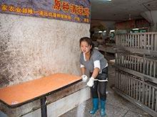 Страх эпидемии гриппа заставил власти Китая ввести карантин