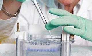 Всего две молекулы содержат в себе ключ от рака, ВИЧ и эпилепсии