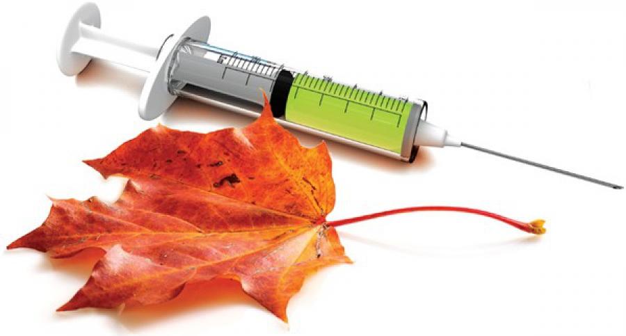 Прививка от гриппа: противопоказания