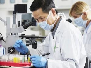 Китайцы разработали экспресс-тест на выявление MERS