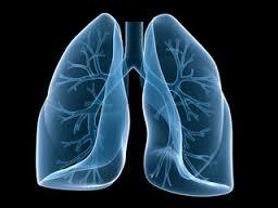 Лечение пневмосклероза: основные принципы