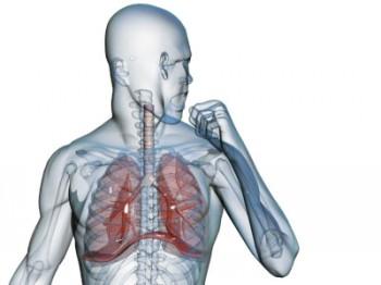 Бактерии, вызывающие пневмонию могут защитить нас от гриппа