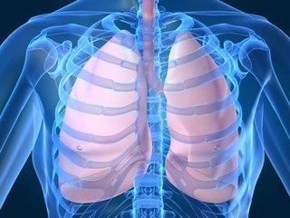 Рентген исследование функции легких