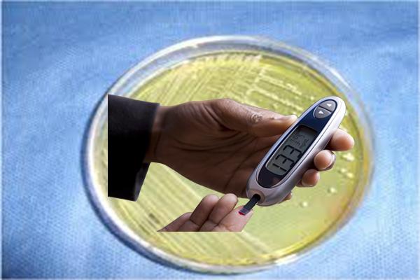 Золотистый стафилококк как фактор риска развития сахарного диабета