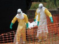 Вирус лихорадки Эбола может сохраняться в семенной жидкости более 9 месяцев