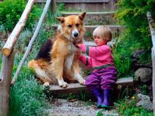 Домашние животные защищают детей от астмы, показало исследование