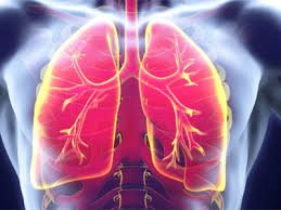 Болезни трахеи и бронхов: причины, симптомы, диагностика, лечение