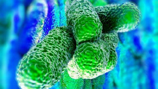 Как детектив: программа отследит все пути передачи инфекции в случае эпидемии