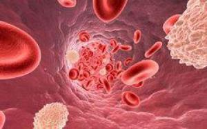 Ученые: ожирение грозит заболеваниями легких