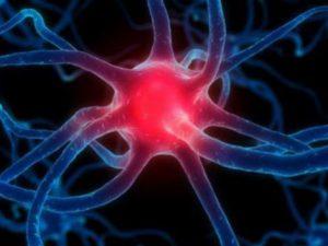 Ученые «обуздали» инфекционные протеины