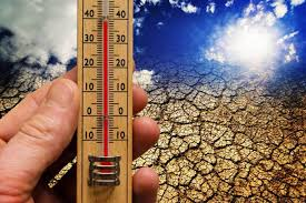 Глобальное потепление приведет к распространению инфекций