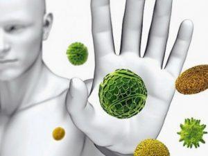 Как уберечь свой организм от инфекции