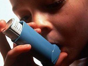 В лечении астмы поможет червь-паразит
