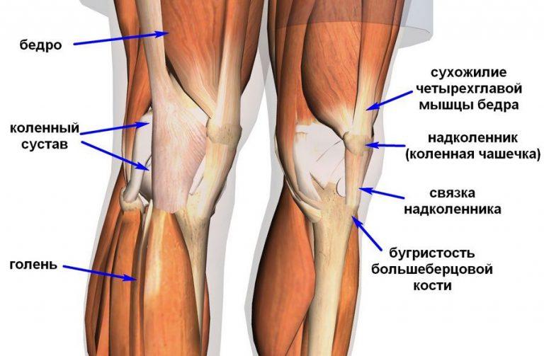 болит бедренный и коленный сустав