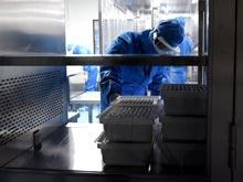 Синтетические вакцины — спасение от полиомиелита, говорят эксперты