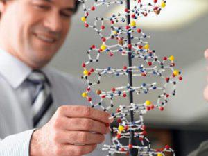 Генетики объединятся с российскими силовыми структурами
