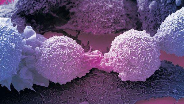 Разработан противораковый протеин
