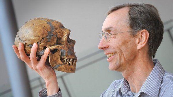 У современного человека обнаружили несколько процентов генов неандертальца