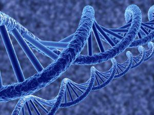 Британские исследователи обнаружили ген, отвечающий за хронические болевые ощущения